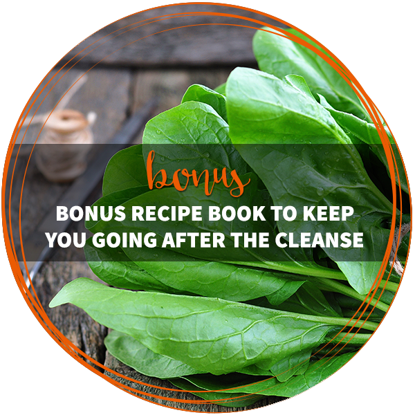 Bonus DIY Cleanse recipe book